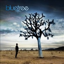 God of This City - Bluetree