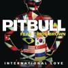 International Love - Pitbull