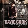 The Last Goodbye - David Cook