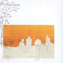Into The Fire - Thirteen Senses