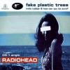 Fake Plastic Trees - Radiohead