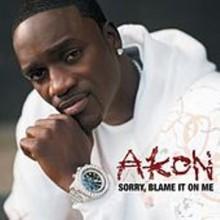 Sorry, Blame It On Me - Akon