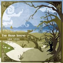 A Dark Congregation - The Hush Sound