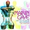 Ain't No Mountain High Enough - Marvin Gaye