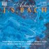 Aria Adagio - J. S. Bach