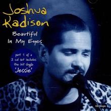 Beautiful In My Eyes - Joshua Kadison