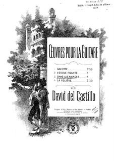 Dans Les Nuages Fantaisie - David Del Castillo