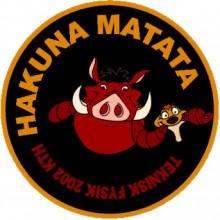 Hakuna Matata - Lion King