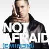 Not Afraid - Eminem