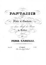 Serenade Pour Deux Guitares Op. 7 - Ferdinando Carulli