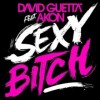 Sexy Bitch - David Guetta