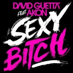 Sexy Bitch - David Guetta
