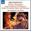 Twelve Variations On A Theme WoO 68 - Haibel