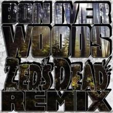 Woods - Bon Iver