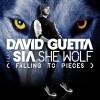 She Wolf - David Guetta