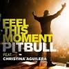 Feel This Moment - Pitbull