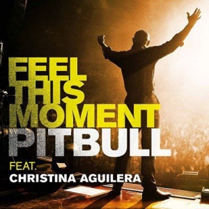 Feel This Moment - Pitbull