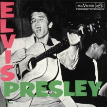 I Love You Because - Elvis Presley