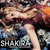 Illegal - Shakira