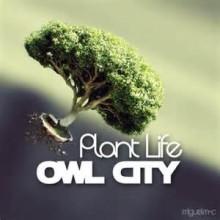Plant Life - Owl City
