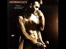 Seasick, Yet Still Docked - Morrissey