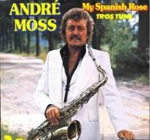 My Spanish Rose - Andre Moss