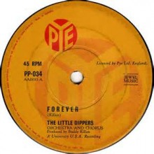 Forever - The Little Dippers