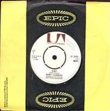 HONEY (I Miss You) - Bobby Goldsboro