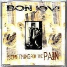 Something For The Pain - Bon Jovi