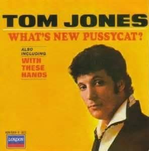 What's New Pussycat - Tom Jones