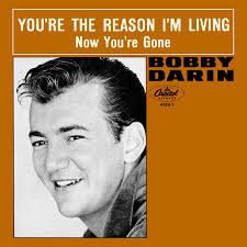 You're The Reason I'm Living - Bobby Darin