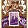 A Bird In A Gilded Cage - Harry Von Tilzer