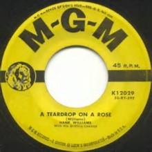 A Teardrop On A Rose - Hank Williams